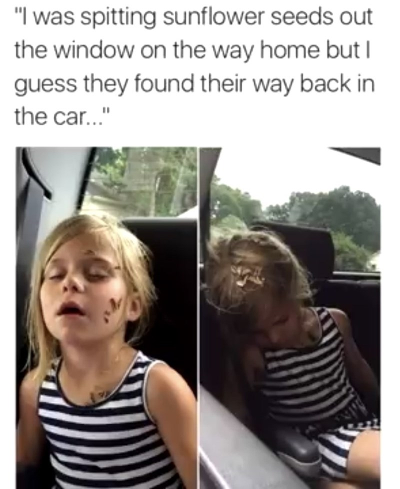 """People - """"I was spitting sunflower seeds out the window on the way home but I guess they found their way back in the car..."""""""