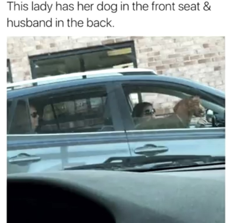 Vehicle - This lady has her dog in the front seat & husband in the back.