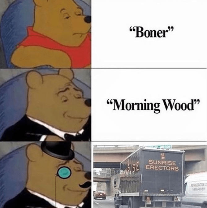Tuxedo winnie the pooh meme using different words for boner, erection, sunrise erector, morning wood.
