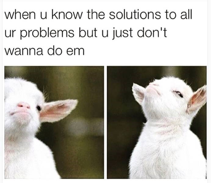 dank memes- goat and knowing the solutions but doing anything about it