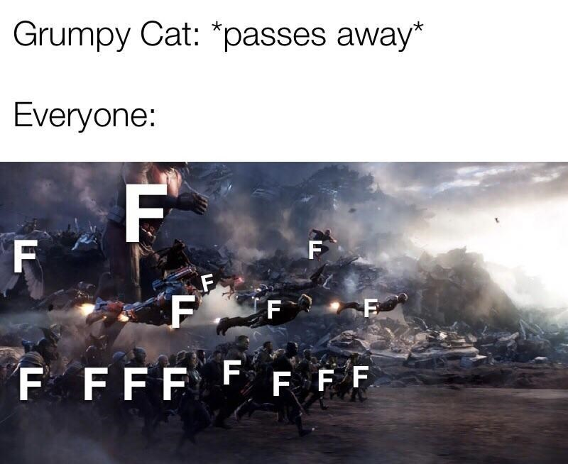 Meme about Grumpy Cat's passing