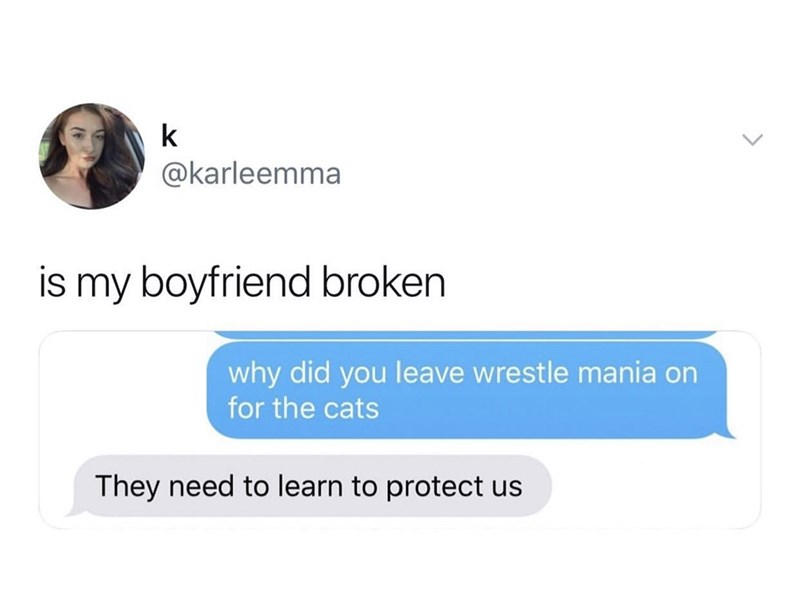 dank memes - Text - k @karleemma is my boyfriend broken why did you leave wrestle mania on for the cats They need to learn to protect us