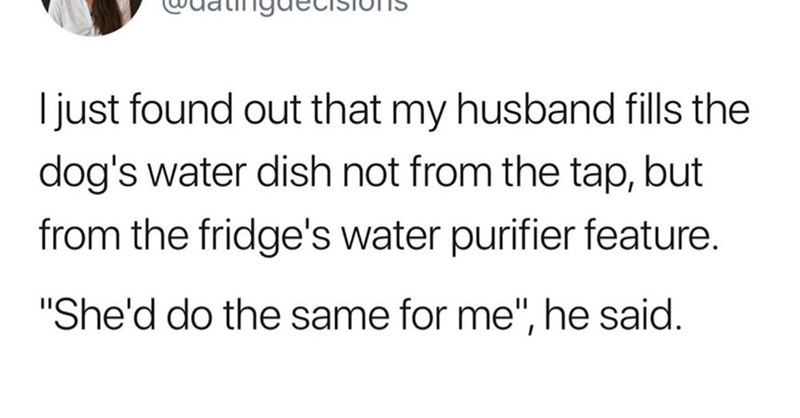 """dank memes - Text - I just found out that my husband fills the dog's water dish not from the tap, but from the fridge's water purifier feature. """"She'd do the same for me"""", he said."""