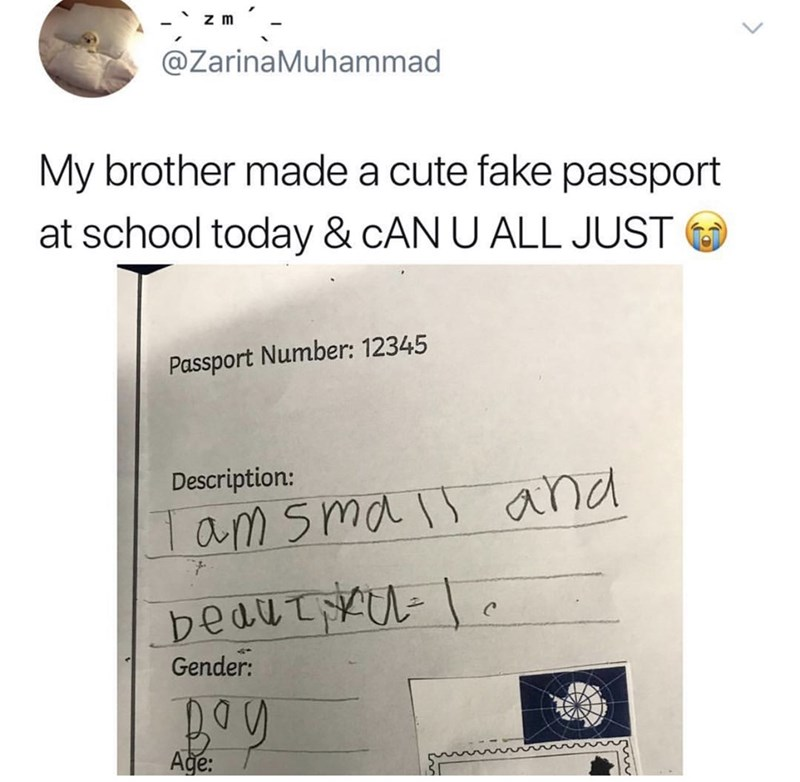dank memes - Text - z m @ZarinaMuhammad My brother made a cute fake passport at school today & CAN U ALL JUST Passport Number: 12345 Description: am sma and bedut Gender: Age: