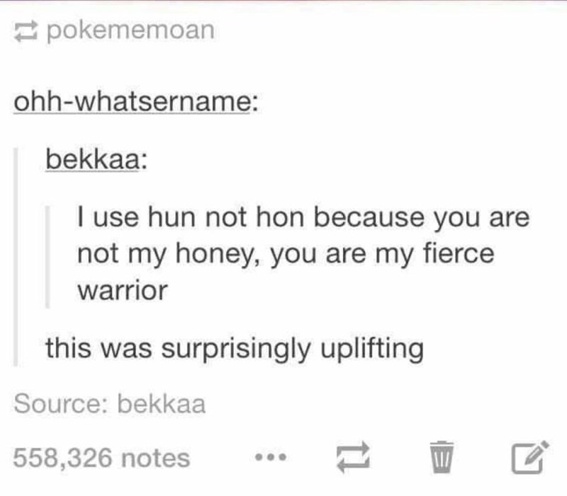 Text - pokememoan ohh-whatsername: bekkaa: I use hun not hon because you are not my honey, you are my fierce warrior this was surprisingly uplifting Source: bekkaa 558,326 notes 11