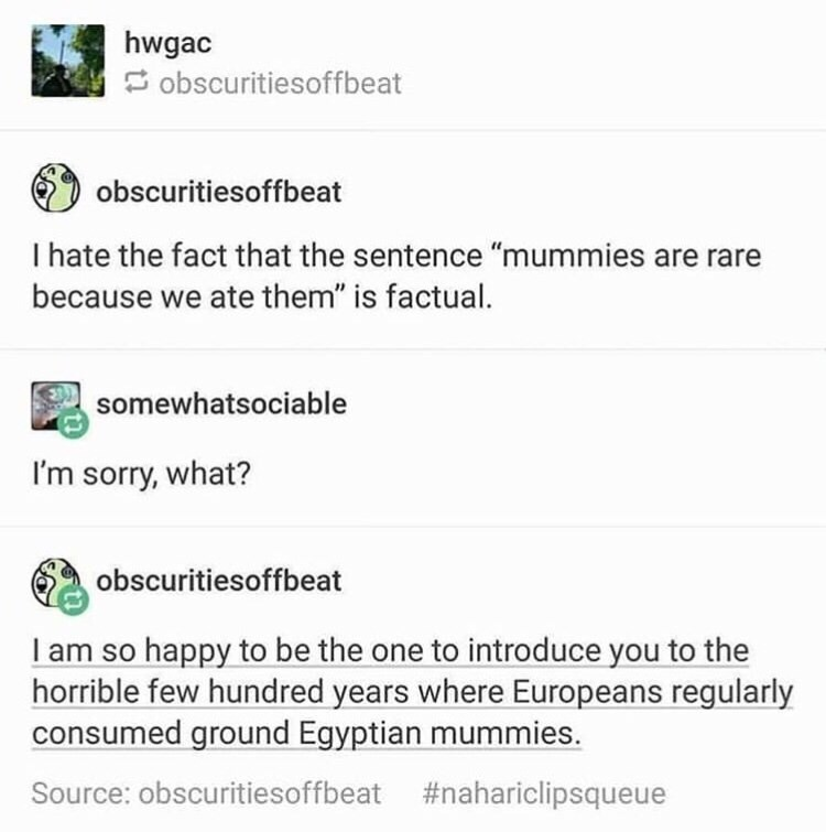 "Text - hwgac obscuritiesoffbeat obscuritiesoffbeat I hate the fact that the sentence ""mummies are rare because we ate them"" is factual. somewhatsociable I'm sorry, what? obscuritiesoffbeat I am so happy to be the one to introduce you to the horrible few hundred years where Europeans regularly consumed ground Egyptian mummies. Source: obscuritiesoffbeat #nahariclipsqueue"