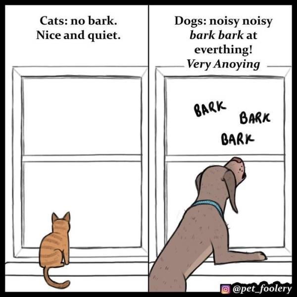 cat comics as to why cats are superior than dogs - Cartoon - Cats: no bark. Dogs: noisy noisy bark bark at Nice and quiet. everthing! Very Anoying BARK BARK BARK @pet foolery