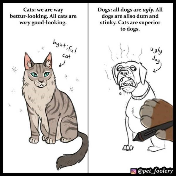 cat comics as to why cats are superior than dogs - Cartoon - Dogs: all dogs are ugly. All dogs are allso dum and stinky. Cats are superior to dogs. Cats: we are way bettur-looking. All cats are vary good-looking. byutifu ugly Cat όο @pet_foolery