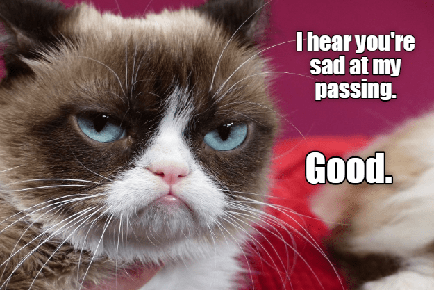meme of grumpy cat happy that his passing made you unhappy