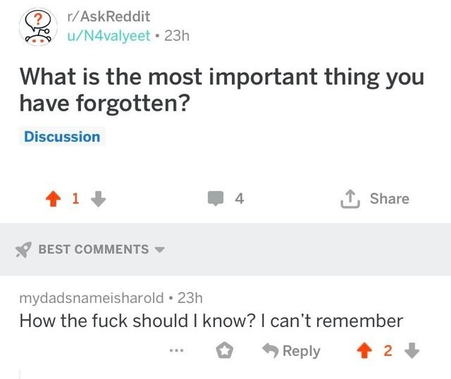 reddit post What is the most important thing you have forgotten? Discussion LShare 1 BEST COMMENTS mydadsnameisharold 23h How the fuck should I know? I can't remember Reply 2