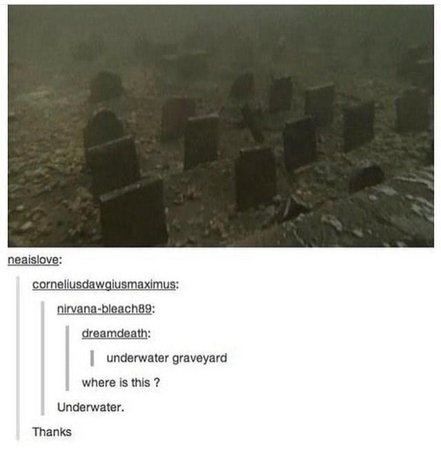 picture of underwater graveyard underwater graveyard where is this ? Underwater. Thanks
