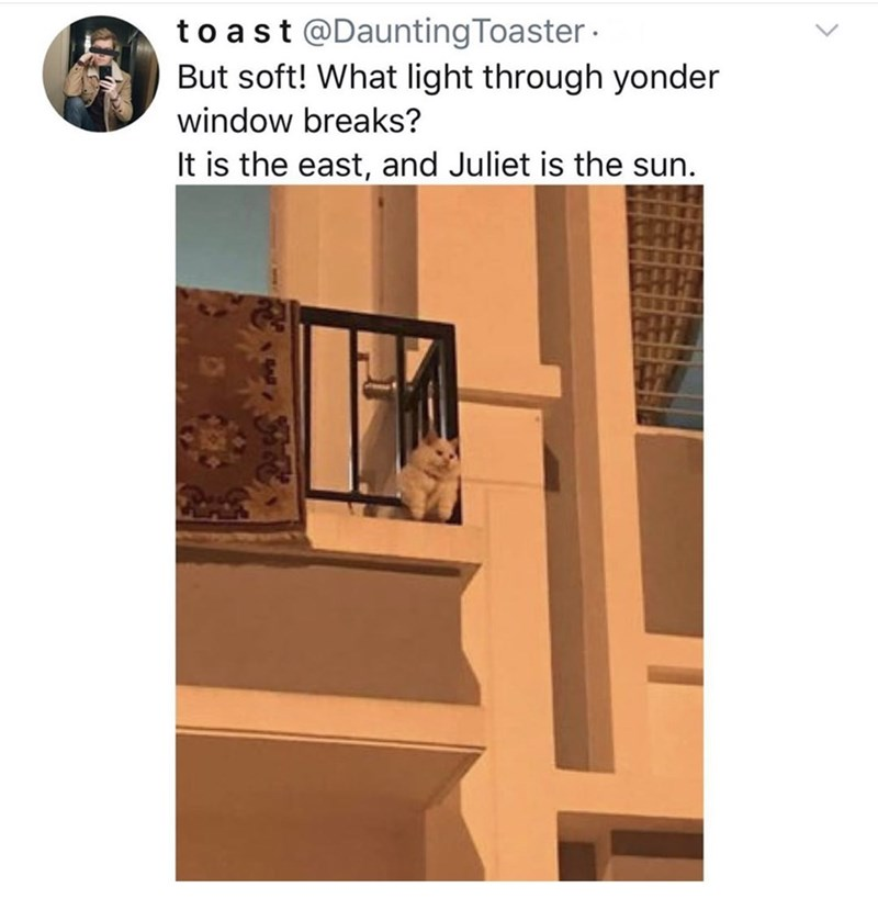 Window - to ast@DauntingToaster But soft! What light through yonder window breaks? It is the east, and Juliet is the sun.