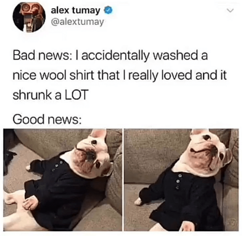 Face - alex tumay @alextumay Bad news: I accidentally washed a nice wool shirt that I really loved and it shrunk a LOT Good news: