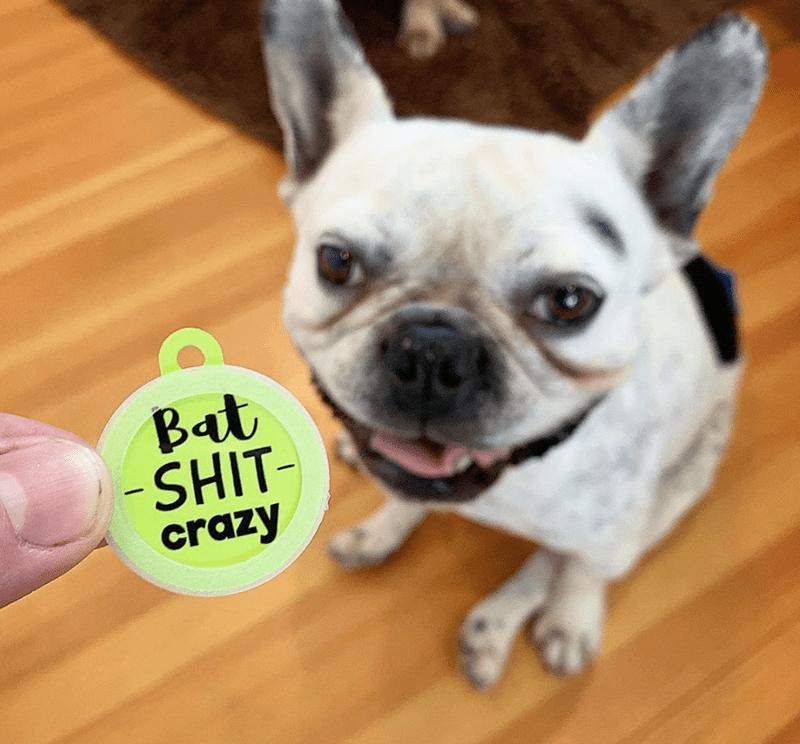 Dog - Bat SHIT- crazy