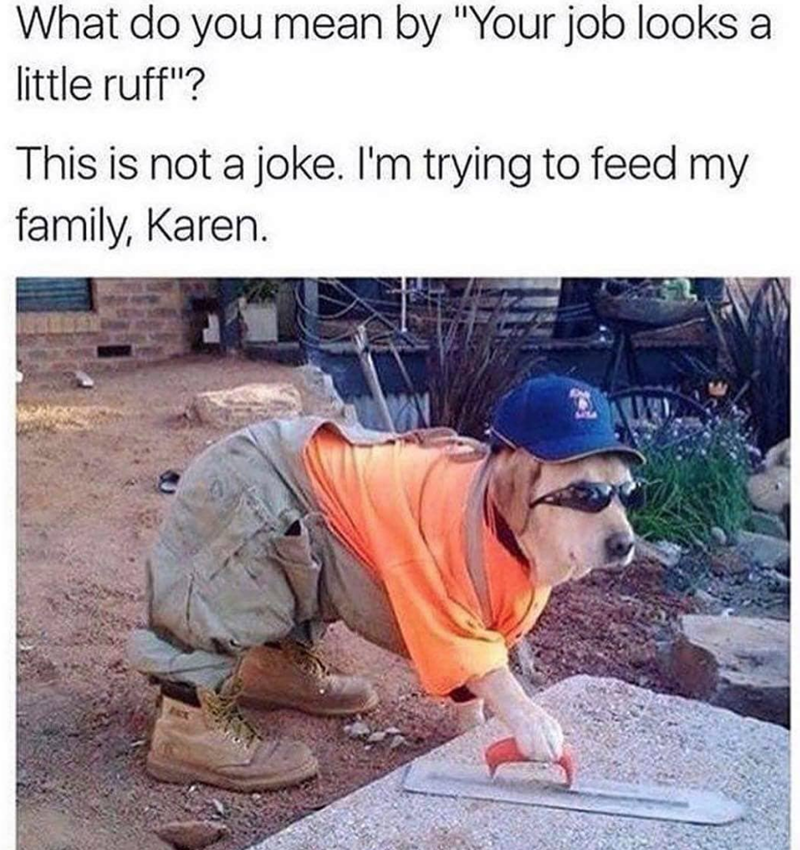 """Human - What do you mean by """"Your job looks a little ruff""""? This is not a joke. I'm trying to feed my family, Karen."""
