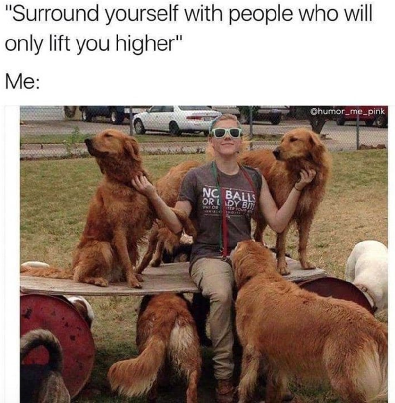 """Dog - """"Surround yourself with people who will only lift you higher"""" Me: @humor me-pink NC BALLS OR LADY BITS PAY O TER YOU"""