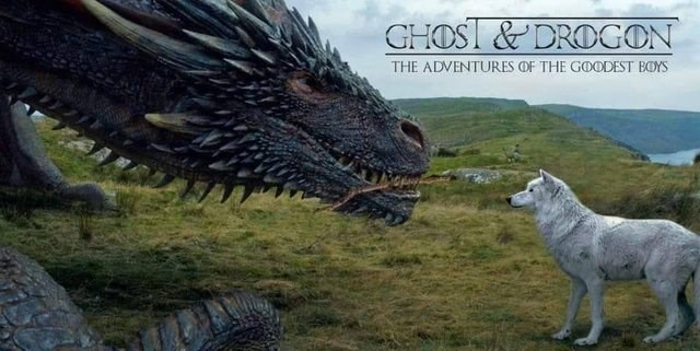 Canidae - GHOSI &DROGON THE ADVENTURES OF THE GOODEST BOYS