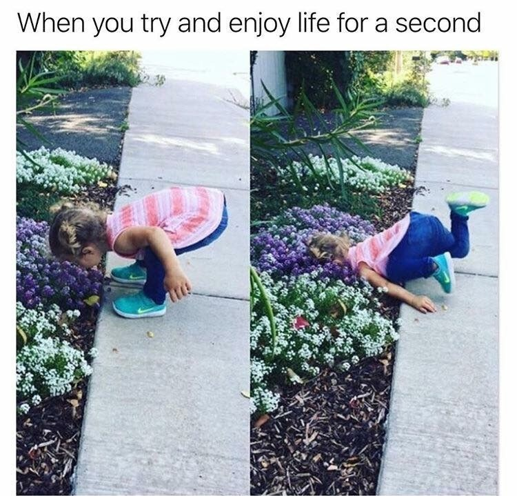 dank memes - Grass - When you try and enjoy life for a second