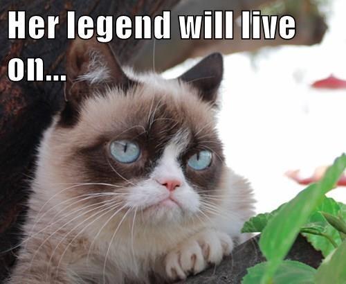 cat meme - Cat - Her legend will live on...