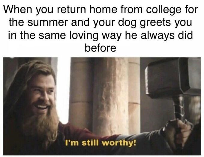 """Meme of Thor saying """"I'm still worthy"""" Avengers: Endgame, when you return home from college for the summer and your dog greets you in the same loving way he always did before, chris hemsworth"""