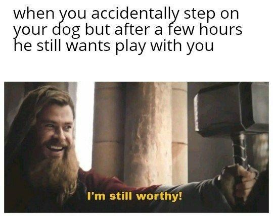 """Meme of Thor saying """"I'm still worthy"""" in Avengers: Endgame, when you accidentally step on your dog but after a few hours he still wants to play with you, chris hemsworth."""