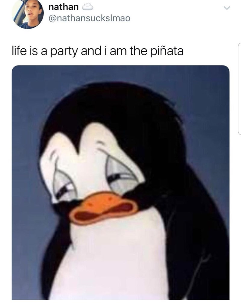 Funny meme featuring sad penguin, the text reads- live is a party and i am the pinata.