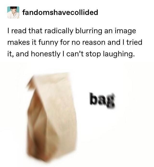 Text - fandomshavecollided I read that radically blurring an image makes it funny for no reason and I tried it, and honestly l can't stop laughing. bag