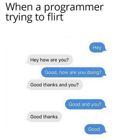 Funny meme about computer programming