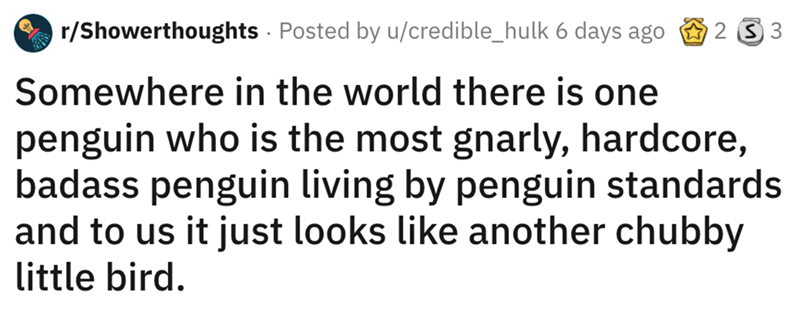 shower thought - Text - r/Showerthoughts Posted by u/credible_hulk 6 days ago 2 S 3 Somewhere in the world there is one penguin who is the most gnarly, hardcore, badass penguin living by penguin standards and to us it just looks like another chubby little bird