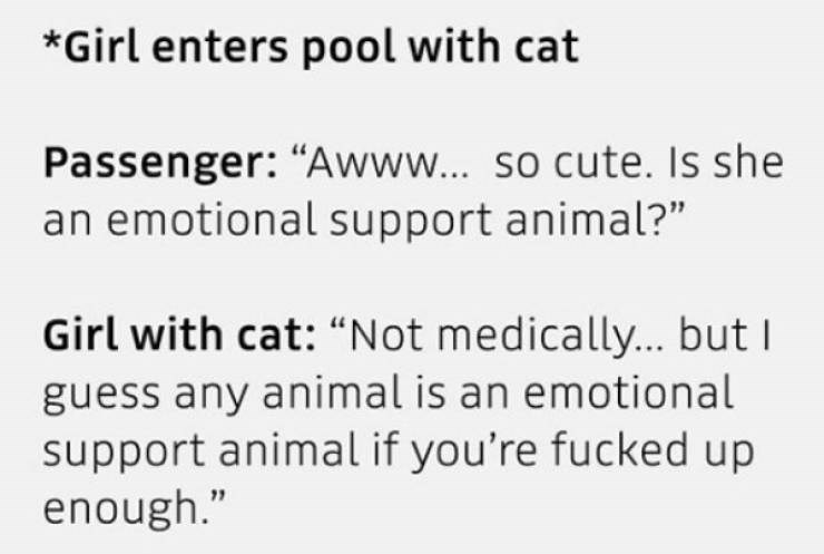 "Text - *Girl enters pool with cat Passenger: ""Awww.. so cute. Is she an emotional support animal?"" Girl with cat: ""Not medically... but guess any animal is an emotional support animal if you're fucked up enough."""