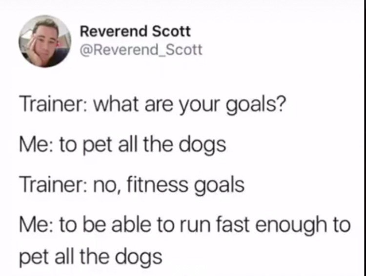 Funny tweet about dogs
