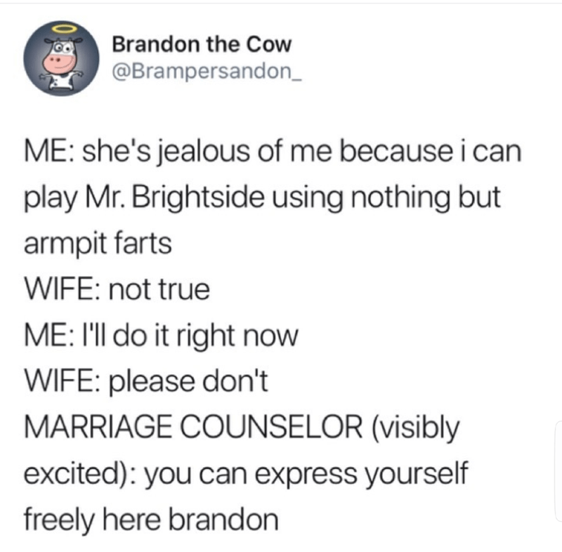funny meme - Text - Brandon the Cow @Brampersandon_ ME: she's jealous of me because i can play Mr. Brightside using nothing but armpit farts WIFE: not true ME: I'll do it right now WIFE: please don't MARRIAGE COUNSELOR (visibly excited): you can express yourself freely here brandon