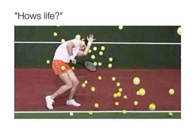 "funny meme - Tennis - ""Hows life?"""