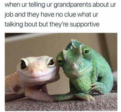 funny meme - Frog - when ur telling ur grandparents about ur job and they have no clue what talking bout but they're supportive