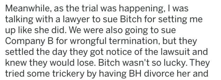 Text - Meanwhile, as the trial was happening, I was talking with a lawyer to sue Bitch for setting me up like she did. We were also going to sue Company B for wrongful termination, but they settled the day they got notice of the lawsuit and knew they would lose. Bitch wasn't so lucky. They tried some trickery by having BH divorce her and