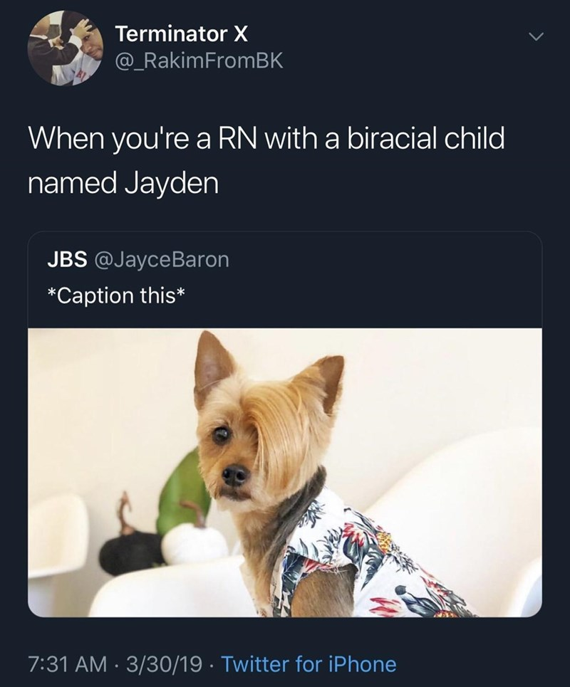 funny meme - Canidae - Terminator X @_RakimFromBK When you're a RN with a biracial child named Jayden JBS @JayceBaron *Caption this* 7:31 AM 3/30/19 Twitter for iPhone