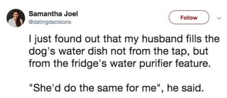 """marriage tweets - Text - Samantha Joel Follow @datingdecisions I just found out that my husband fills the dog's water dish not from the tap, but from the fridge's water purifier feature. """"She'd do the same for me"""", he said."""