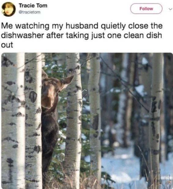 marriage tweets - Tree - Tracie Tom Follow @tracietom Me watching my husband quietly close the dishwasher after taking just one clean dish out