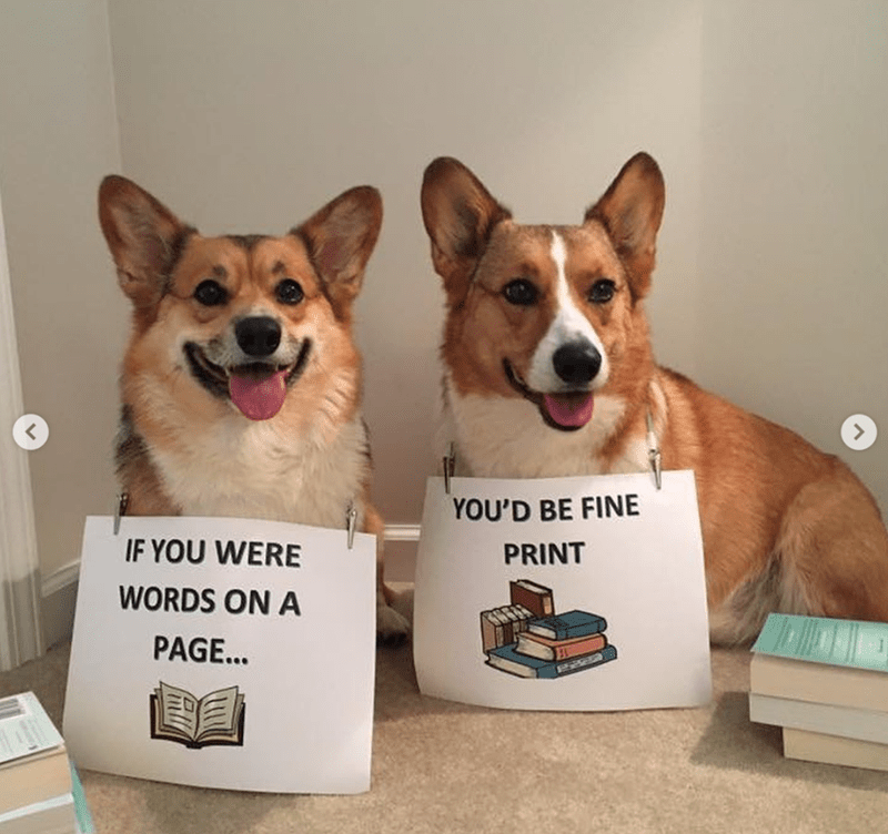 Dog - YOU'D BE FINE IF YOU WERE PRINT WORDS ON A PAGE...