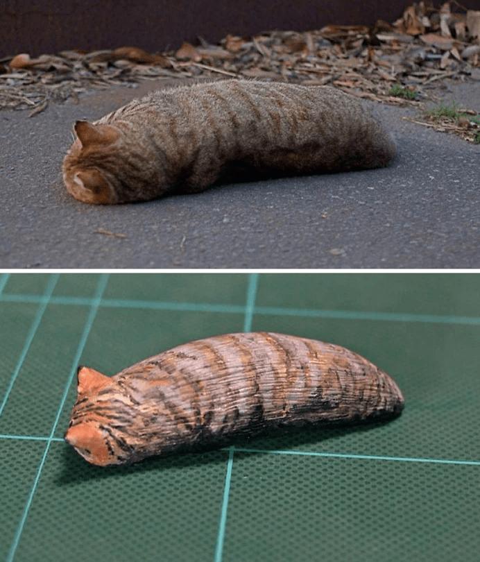 animal meme art - Pupa