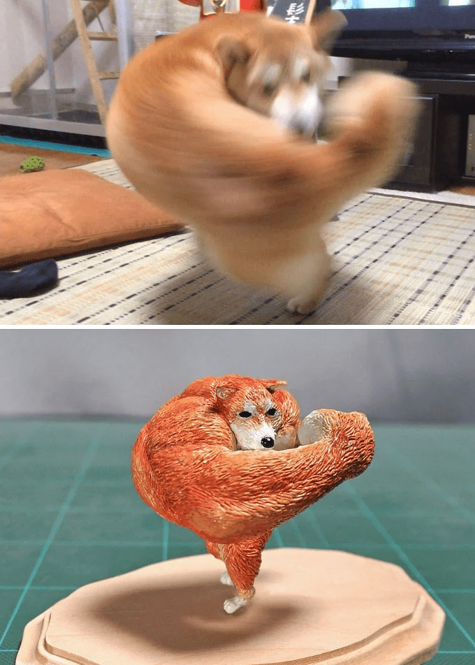 animal meme art - Shiba inu