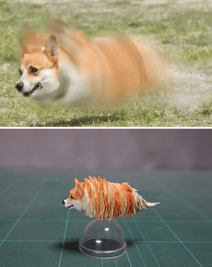 animal meme art - Mammal