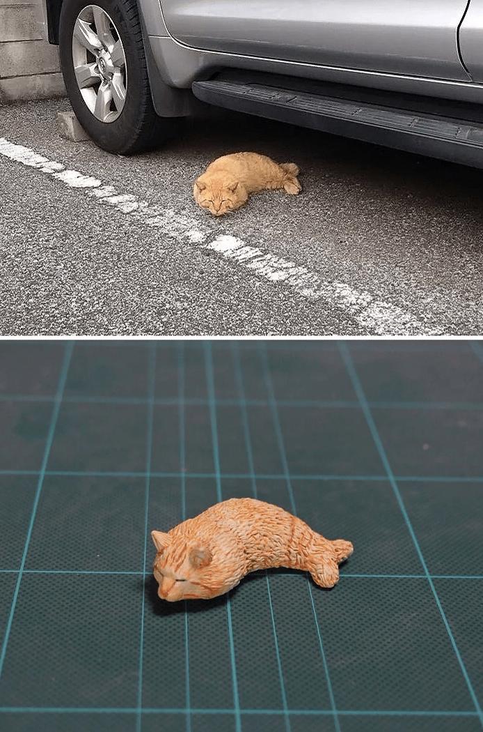 animal meme art - Floor
