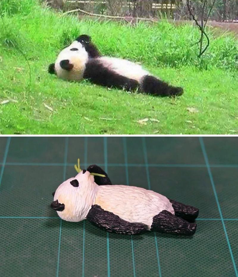 animal meme art - Panda