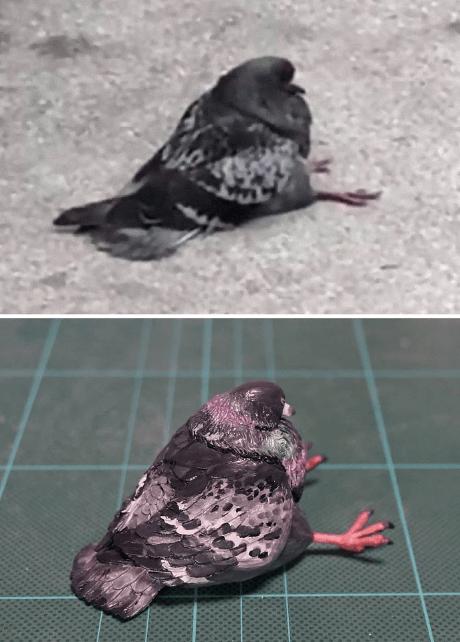 animal meme art - Pigeons and doves