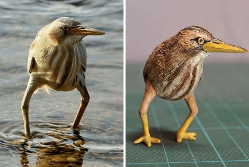 animal meme art - Bird