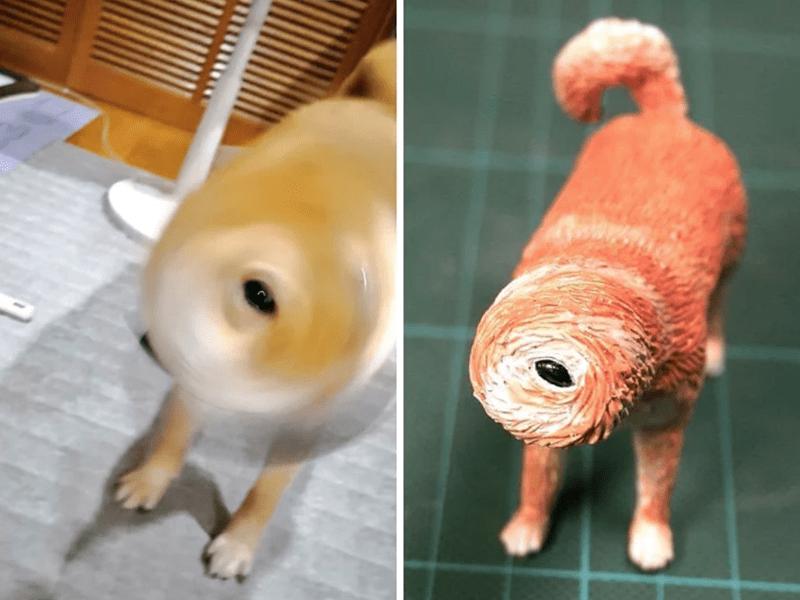 animal meme art - Canidae