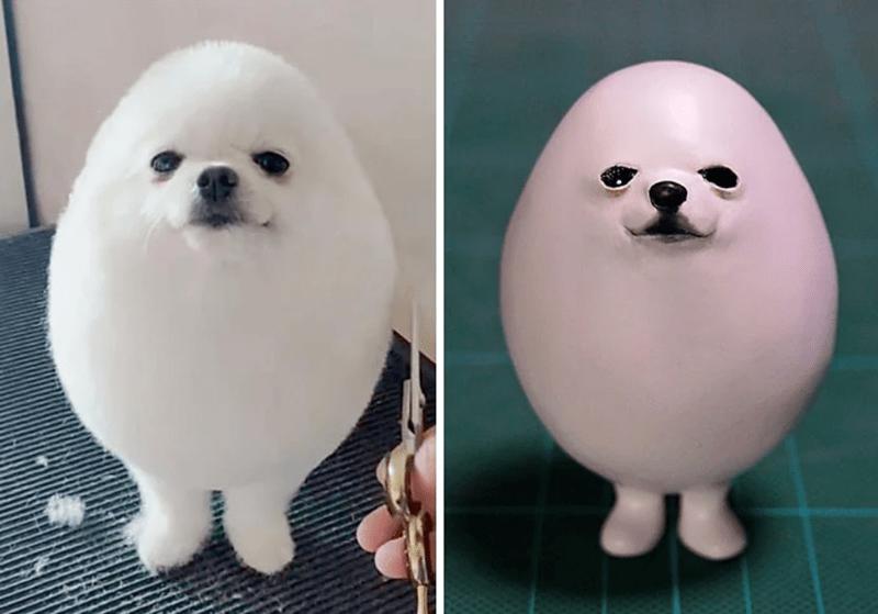animal meme art - Dog