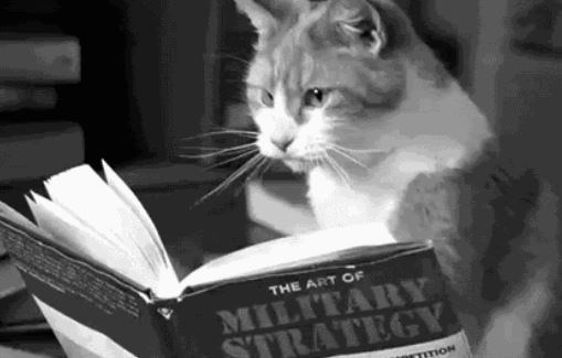 Cat - THE ART OF MILITARY STRATEGY TTON