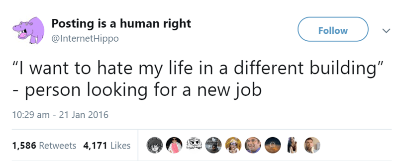 """Text - Posting is a human right @InternetHippo Follow """"I want to hate my life in a different building"""" - person looking for a new job 10:29 am 21 Jan 2016 1,586 Retweets 4,171 Likes"""